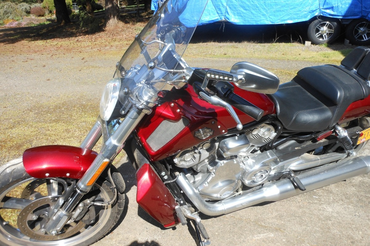 2009 Harley-Davidson muscle, 0