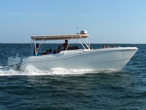 G Cat Boats for sale