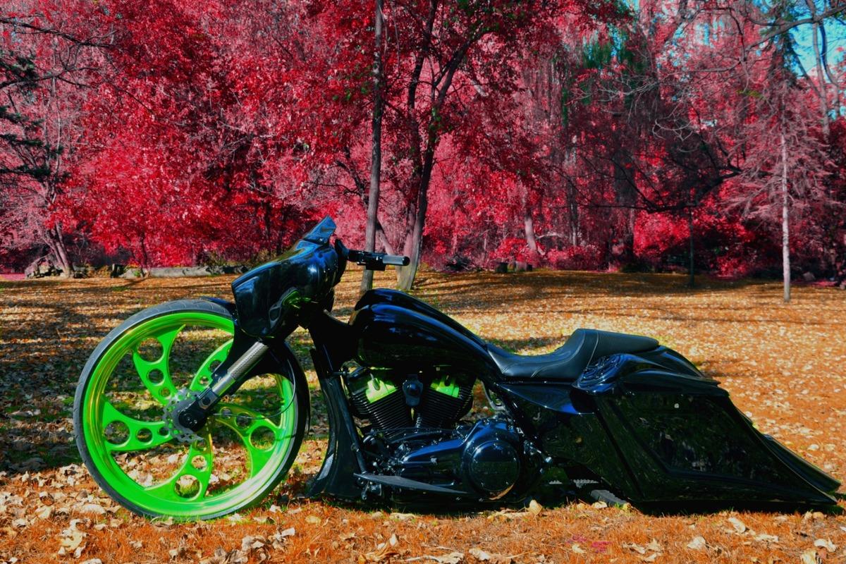 "2011 Custom 30"" Harley Davidson Electra Glide Ultra Limited Electra Glide Ultra Limited., 2"