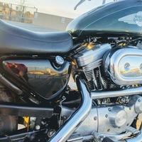 1996 Harley-Davidson Sportster 883, 6