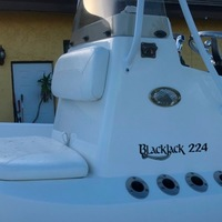 2015 BlackJack 224, 2