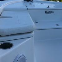 2015 BlackJack 224, 4